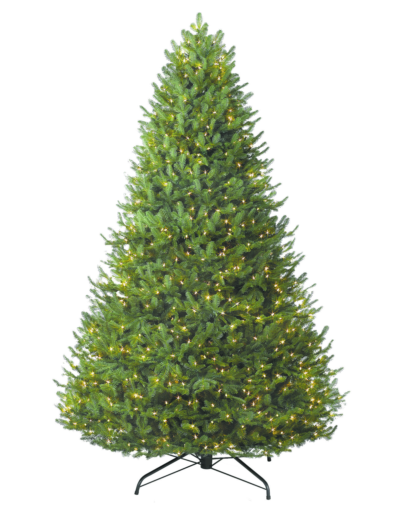 ChristmasTreeTips_121416A